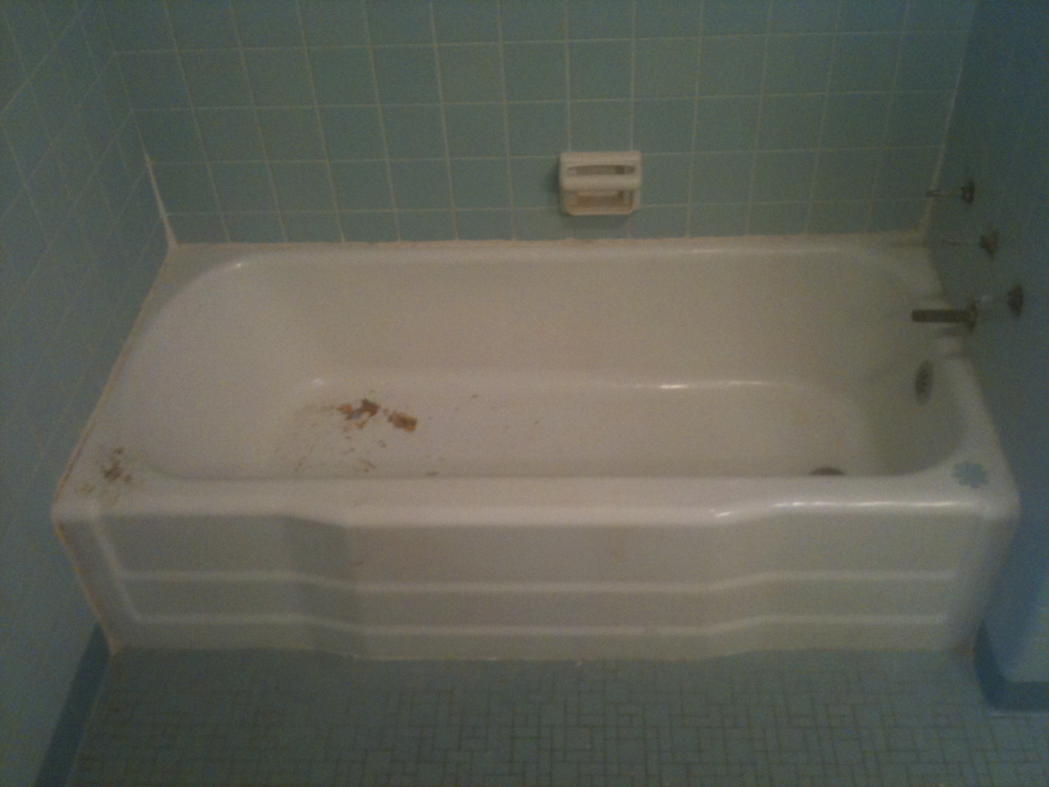 Bathtub Refinishing for Savannah, Pooler, Richmond hill ...